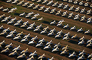 Seen from the air at dawn, dozens of F-4 Phantom fighters from the Cold War-era are laid out in grids across the arid desert at Davis-Monthan Air Forbe Base near Tucson Arizona. These retired aircraft whose air frames are too old for flight are being stored then recycled, their aluminium worth more than their sum total at this repository for old military fighter and bomber aircraft. They sit in neat rows in low light, their shadowy wings are blue in colour but their fuselage are stripped of markings, being taped up against the dust. This is a scene of once-great flying machines relegated to sad scrap, long-after the Soviet Union's own demise when western armies fought a war of propaganda. .