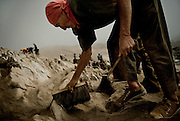"""Domingo Leon, 63, a Quechua from the higlands in Yungay collects guano in Guañape Norte Island in the coast off Peru, April 2009. They is using a brush and a """"rasqueta"""", brushing the hill until the solid rock is exposed. The daily task is to collect around 35 sacks of 50kg."""