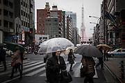 JAPAN, TOKYO, FEBRUARY 2013 -  Tokyo tower from sakura dori in Mita [FR] Le tour de Tokyo depuis sakura dori a Mita - la route des cerisiers