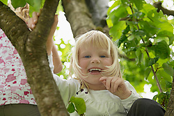 Small blonde girl sitting in cherry tree laughing
