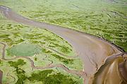Nederland, Zeeland, Gemeente Hulst, 04-07-2006; het Verdronken Land van Saeftinghe, getijdengebied aan de uiterste oostkant van Zeeuws-Vlaanderen op de grens met Belgie .de voormalige polder is het grootste brakwatergebied van Europa; kenmerkend voor de getijden zijn de slikken, schorren en geulen. Het Verdronken Land is een natuurreservaat, niet vrij toegankelijk en in beheer bij het Zeeuws Landschap, belangrijk als broedgebied, overwinterings- en rustgebied voor vogels; deevan estuarium van de Schelde;.the Drowned Land of Saeftinghe, tidaarea at the extreme east side of DutchFlanders on the border with Belgium; the former polder is the largest brackish water of Europe; because of the the tides, there are mud flats and gullies. The Drowned Land is a nature reserve, not freely accessible. It is managed by the Zeeuws Landscape and important as bird sanctuary, part of the Scheldt estuary;.luchtfoto (toeslag); aerial photo (additional fee required); .foto Siebe Swart / photo Siebe Swart