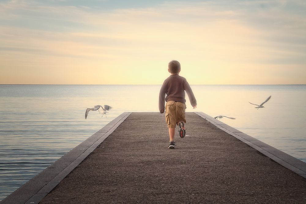 A boy runs towards seagulls at the end of a pier, his back to camera