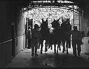 Horses run out of a bull fighting stadium in Madrid, Spain and into a dark tunnel