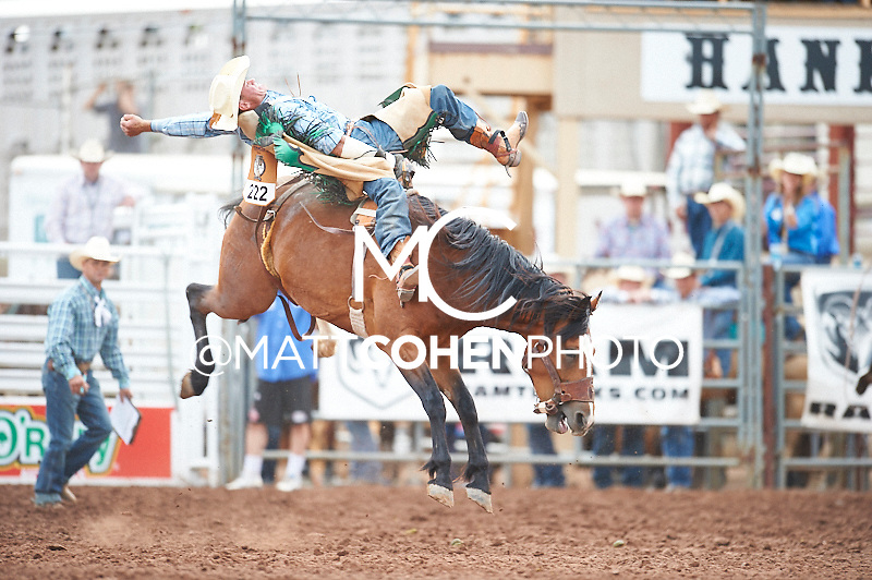 Bareback rider Lane Morrow of Brush, CO rides Slow Glow at the Pikes Peak or Bust Rodeo in Colorado Springs, CO.<br /> <br /> <br /> UNEDITED LOW-RES PREVIEW<br /> <br /> <br /> File shown may be an unedited low resolution version used as a proof only. All prints are 100% guaranteed for quality. Sizes 8x10+ come with a version for personal social media. I am currently not selling downloads for commercial/brand use.