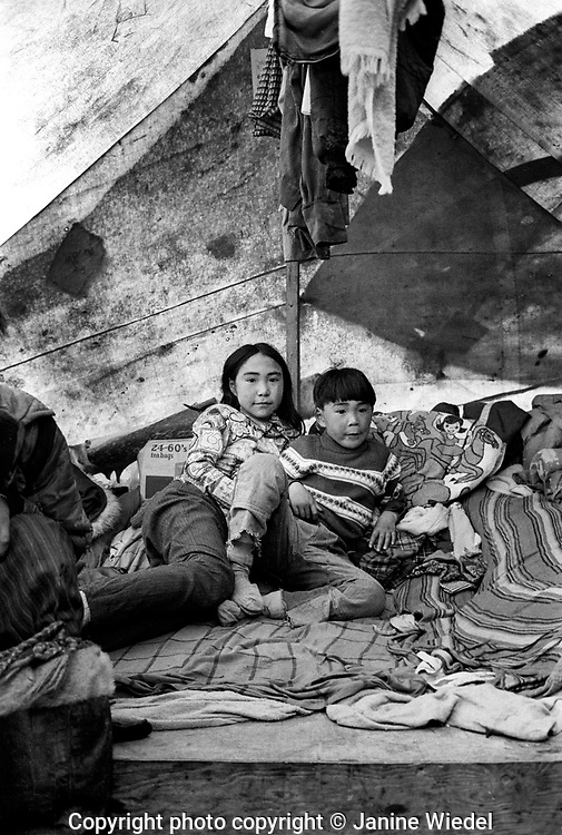 Inuit family living in tents for the summer where they  live off the land. Near Pangnirtung, a small settlement in the Canadian Arctic in the territory of Nunavut (North West Territories) 1973