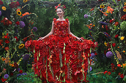June 12, 2017 - Saint Petersburg, Russia - June 12, 2017. - Russia, Saint Petersburg. - Russia Day celebrations. In picture: International Flower Festival on Nevsky Prospekt. (Credit Image: © Russian Look via ZUMA Wire)