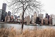 New York City. USA<br /> 2016