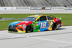November 2, 2018 - Fort Worth, TX, U.S. - FORT WORTH, TX - NOVEMBER 02: Monster Energy NASCAR Cup Series driver Kyle Busch (18) drives down pit row during practice for the AAA Texas 500 on November 02, 2018 at the Texas Motor Speedway in Fort Worth, Texas. (Photo by Matthew Pearce/Icon Sportswire) (Credit Image: © Matthew Pearce/Icon SMI via ZUMA Press)