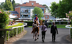 Circus Couture ridden by Jockey John Egan goes to post for the Royal Hunt Cup