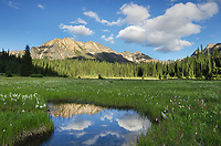 Kangaroo Ridge, reflected in waters of State Creek in Washington Pass Meadows, North Cascades Washington