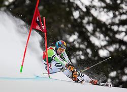 22.12.2013, Gran Risa, Alta Badia, ITA, FIS Ski Weltcup, Alta Badia, Riesenslalom, Herren, 1. Durchgang, im Bild Stefan Luitz (GER) // Stefan Luitz of Germany in action during mens Giant Slalom of the Alta Badia FIS Ski Alpine World Cup at the Gran Risa Course in Alta Badia, Italy on 2012/12/22. EXPA Pictures © 2013, PhotoCredit: EXPA/ Johann Groder