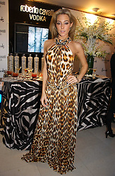 JACQUI AINSLEY at the launch of Roberto Cavalli Vodka held in the International Designer Room, Harrods, Hans Crescent, London on 5th December 2006.<br /><br />NON EXCLUSIVE - WORLD RIGHTS