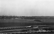14/05/1965<br /> 05/14/1965<br /> 14 May 1965<br /> New Golf Range at Leopardstown, Foxrock, Dublin. Image shows a view of the driving range from across the racecourse.