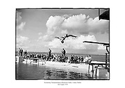 Swimming Championships at Blackrock Baths, County Dublin. Diver Jack Foley,<br /> <br /> 2nd August 1958<br /> <br /> 02/08/1958