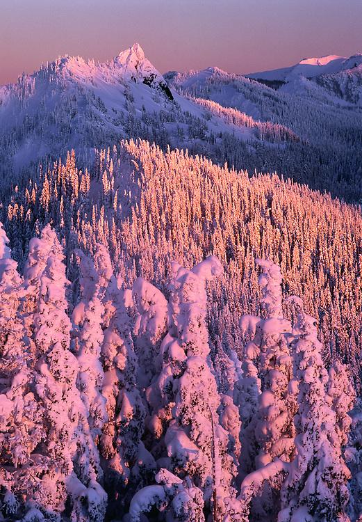 Olympic National Park, Washington, USA. Winter view from Hurricane Ridge toward Steeple Rock, evening light.