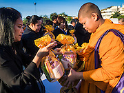 """20 JANUARY 2017 - BANGKOK, THAILAND: Buddhist monks collect alms from people during a """"tak bat"""" (alms giving ceremony) on the plaza in front of Bangkok's City Hall. Hundreds of municipal workers and civil servants made merit by praying and presenting alms to 89 Buddhist monks Friday to mark 100 days of mourning since the death of revered Bhumibol Adulyadej, the Late King of Thailand. The significance of 89 monks is that the King, who died on October 13, 2016, was a few weeks short of his 89th birthday.        PHOTO BY JACK KURTZ"""