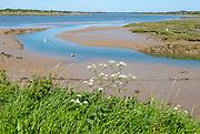River Deben landscape looking north west from Shottisham Creek, Ramsholt,  Suffolk, England, UK
