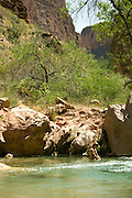 Maia Nelson (release on file) plays in Havasu Creek, Havasupai Indian Reservation, Grand Canyon National Park