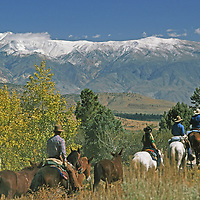 Horse riders descend Sierra  Nevada, with White Mountains background.