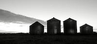 Grain Bins East of Calgary near Carseland, AB
