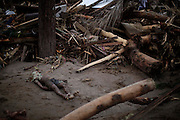 A landslide victim is lays next to debris in Teresopolis, Brazil, Thursday, Jan. 13, 2011.<br /> <br /> A series of flash floods and mudslides struck several cities in Rio de Janeiro State, destroying houses, roads and more. More than 900 people are reported to have been killed and over 300 remain missing in this, Brazil's worst-ever natural disaster.