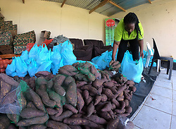 "SOUTH AFRICA - Durban - 30 April 2020 - Umgibe Stop Hidden Hunger project is about empowering communities in the townships of KwaZulu Natal, South Africa towards sustainable food pacels that they harvest in their site to the poorest communities. In the pic is the founder Nonhlanhla Joye ""Ma Joy"" preparing the food parcels for distribution.<br /> Picture: Motshwari Mofokeng/African News Agency (ANA)"