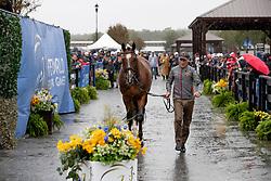 Van Springel Joris, BEL, Imperial van de Holtakkers<br /> World Equestrian Games - Tryon 2018<br /> © Hippo Foto - Dirk Caremans<br /> 16/09/2018