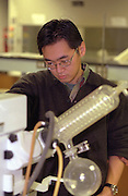 Science student age 22 concentrating on laboratory experiment. Macalester College St Paul  Minnesota USA