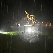 NLD/Utrecht/20100923 - NFF 2010, premiere Richting West, noodweer tijdens de premiere