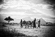 Women taking supplies across Kaisut Desert by mule. Gumato Lomurut, MR#45. Ntelengon Lamut, MR#46. Kehsimo Eisimkelle, MR#47.