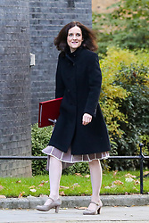 © Licensed to London News Pictures. 22/10/2019. London, UK. Secretary of State for Environment, Food & Rural Affairs THERESA VILLIERS arrives in Downing Street to attend the weekly cabinet meeting. Photo credit: Dinendra Haria/LNP