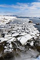 incoming tide floods snow covered coast landscape, Vestvågøy, Lofoten islands, Norway