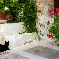 Mesta - Chios - Greece