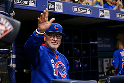 September 19, 2017 - St. Petersburg, Florida, U.S. - WILL VRAGOVIC   |   Times.Chicago Cubs manager Joe Maddon (70) waves to the crowd after the video tribute played on the scoreboard in the second inning of the game between the Chicago Cubs and the Tampa Bay Rays at Tropicana Field in St. Petersburg, Fla. on Tuesday, Sept. 19, 2017. (Credit Image: © Will Vragovic/Tampa Bay Times via ZUMA Wire)