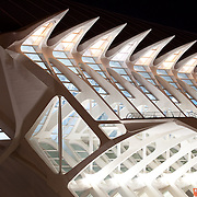 Part of a hugh complex dedicated to the arts and sciences in Valencia Spain.