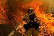 A firefighter battles the wildfire near the farmland along a hillside in Point Mugu , Calif. Friday, May 3, 2013..(AP Photo/Ringo H.W. Chiu)