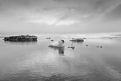 Ice cubes and Ice bergs at the lake Jokulsarlon, south east of Iceland  - Ísjakar á Jökulsárlóni