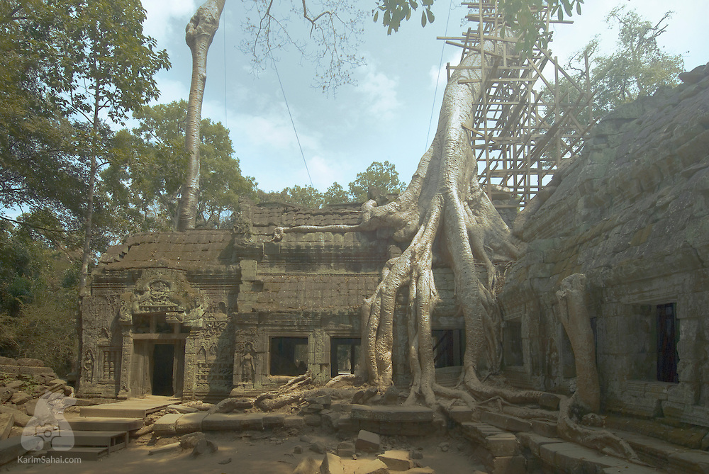 With its distinctive overgrown silk cotton tree, Ta Phrom is one of the most visited sites in Angkor. The 12th century structure commissioned by Jayavarman VII features prominent carvings modelled on the ruler's close family members