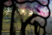 With the UK death toll reaching 38,489, a further 113 victims in the last 24hrs, and the government's pandemic lockdown still in effect, the last few south Londoners enjoy late sunshine in Ruskin Park, a public green space in the borough of Lambeth, on 31st May 2020, in London, England.