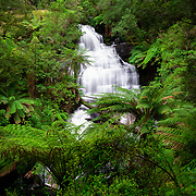 Triplet Falls in Otways National Park, Victoria.