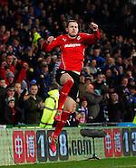Cardiff City v Sunderland 281213