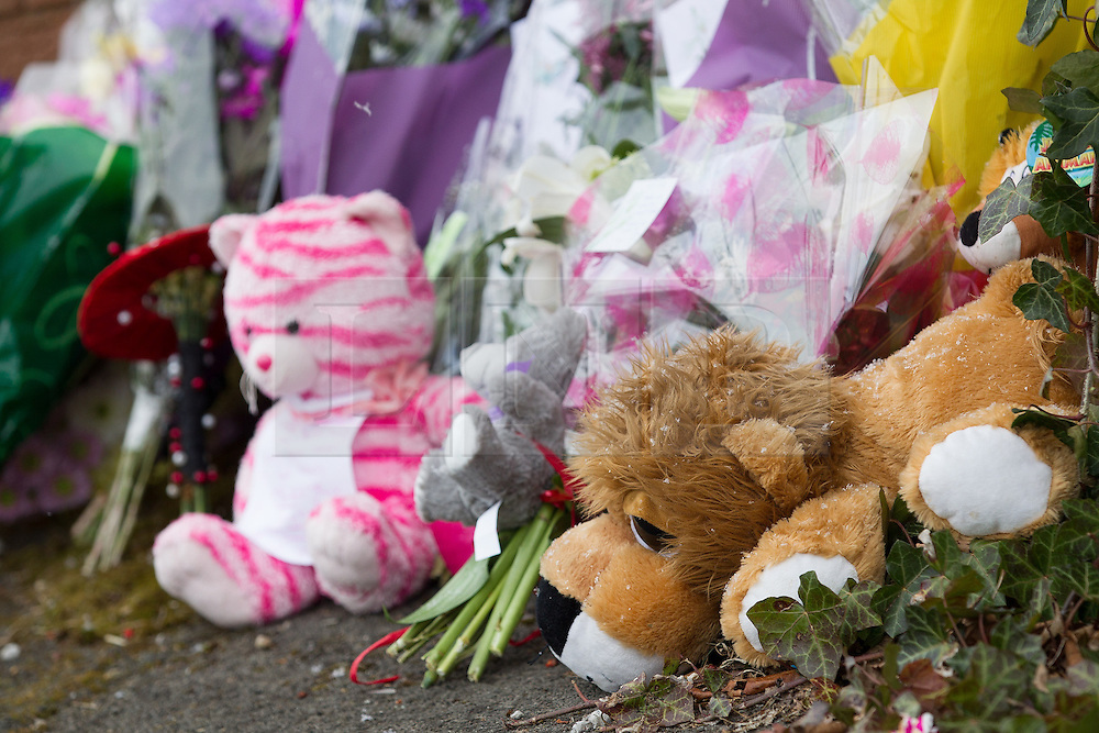 © Licensed to London News Pictures . 27/03/2013 . Manchester , UK . Flowers and tributes left at the scene . Scene at Chaucer Grove , Atherton today (27th March) after a 14 year old girl , named as Jade Anderson , was mauled to death by four dogs at a friend's house yesterday afternoon (26th March) . Armed police exterminated the dogs at the scene . Photo credit : Joel Goodman/LNP