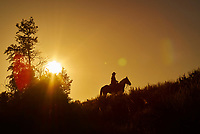 Horse and rider silhouetted at sunrise at Grand Teton National Park in Wyoming.