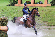 Mr Sneezy ridden by James Avery in the Equi-Trek CCI-L4* Cross Country during the Bramham International Horse Trials 2019 at Bramham Park, Bramham, United Kingdom on 8 June 2019.