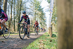 Tiffany Cromwell takes on the first rough cobbled sector - Ronde van Drenthe 2016, a 138km road race starting and finishing in Hoogeveen, on March 12, 2016 in Drenthe, Netherlands.