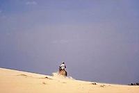 Hombre en caballo sobre medano, Parque Nacional Cinaruco-Capanaparo, Apure, Venezuela