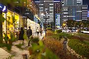 Coulée verte dans le quartier d'affaires de Gwanghwamun, Séoul, Corée du Sud. Cet aménagement paysager fait partie d'un vaste programme de réhabilitation de la faune et de la flore dans le centre très urbanisé de la ville, afin de reconnecter humains et nature. // A green belt in Gwanghwamun's business district, Seoul, South Korea. This landscape project is part of a vast program to rehabilitate the flora and fauna in the urban center of the city allowing the public to reconnect with nature.