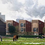 Nederland Groningen 22 november 2008 20081122 Foto: David Rozing ..Nieuwbouw woningen in de wijk de Held, aan de rand van Groningen gelegen tegen polder gebied/ groene omgeving. Op de achtergrond is de uitstoot van de suikerfabriek te zien. ..Foto David Rozing