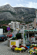 Small shop selling flowers, with Biokovo National Park, part of the Dinaric Alps, in the background. Makarska, Croatia