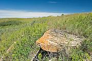 sandstone rock formation on the prairie<br /> Roche Perce near Estevan<br /> Saskatchewan<br /> Canada